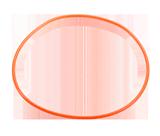 WP-O1000 O-Ring